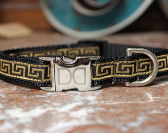 Caesar Dog Collar and Leash