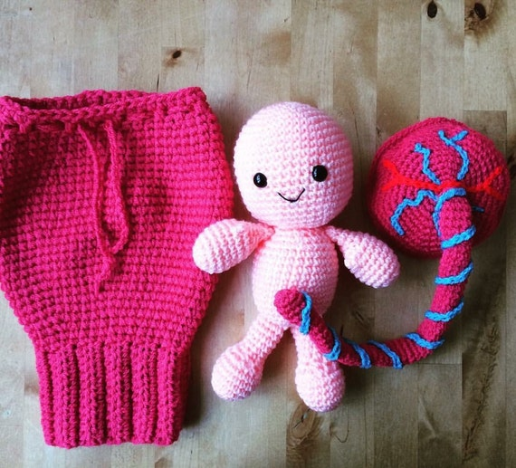 crochet baby umbilical cord placenta and uterus teaching aid midwife doula made to order. Black Bedroom Furniture Sets. Home Design Ideas