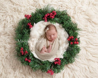 Digital Christmas Backdrop - prop for newborn photography