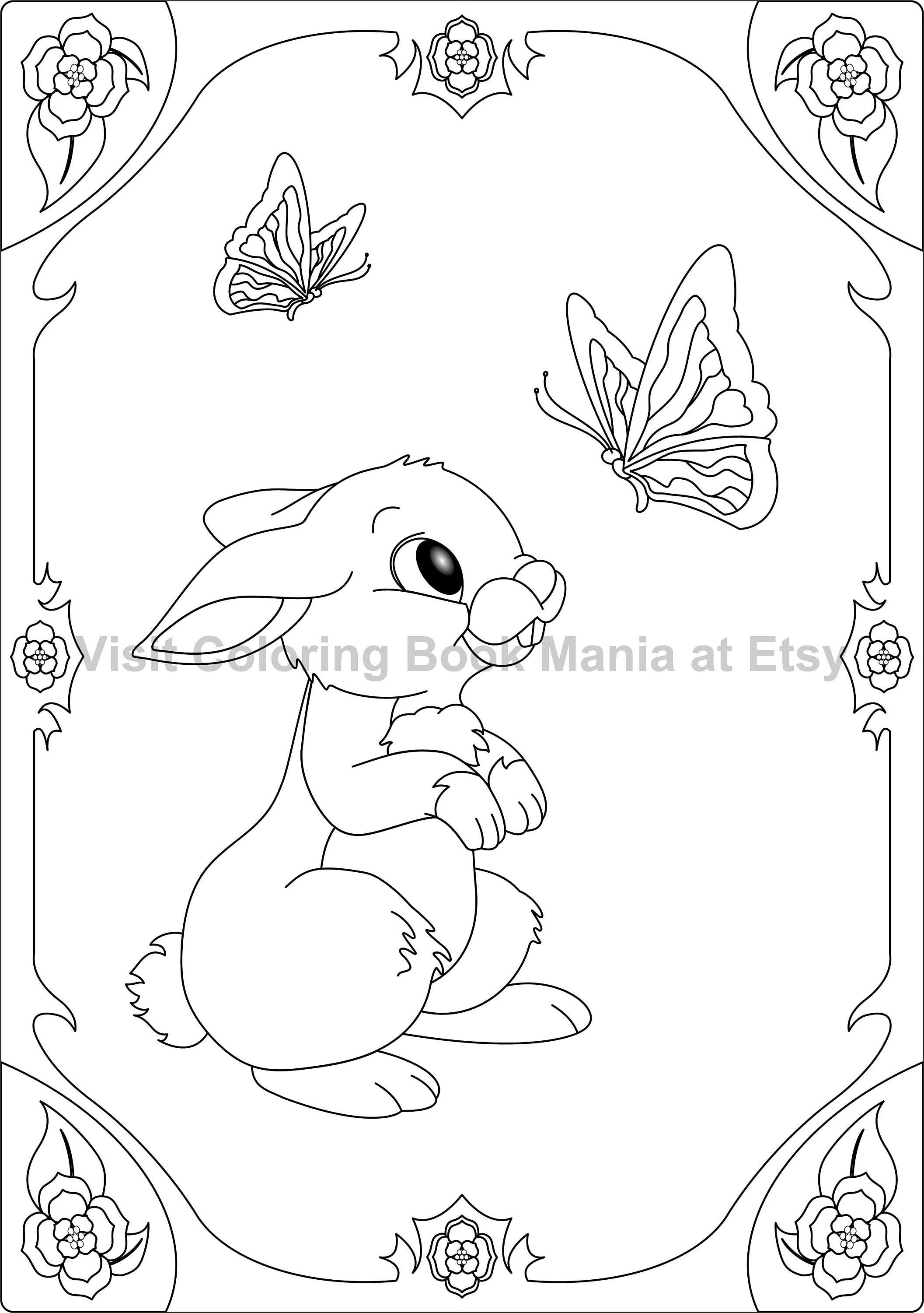 The coloring book of cards and envelopes flowers and butterflies - Nothing Cuter Than A Pair Of Rabbits 4 Note Cards To Color Matched Set Of Rabbits With Butterflies And Flowers 4 Cards With Envelopes
