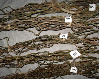 Natural decor willow tree curly branches rustic arrangement wood mantel twigs and twirls _ Choose your set