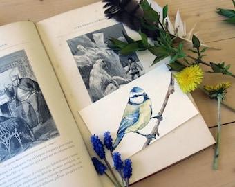 Original watercolor - blue Titmouse, Messenger of spring