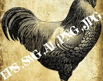 Vector image Rooster,Vintage clipart ,Eps,Svg,Ai,Png,Jpg,Instant download,Printable clipart,Digital clipart,Printable B&W Graphic