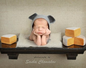 Digital background backdrop newborn baby girl or boy cheese mouse shelf