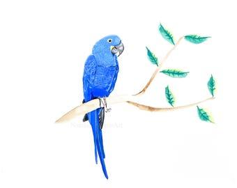 Blue Macaw Bird Print A3, 11x14 Hyacinth Macaw Picture A4, 8x10 Macaw Print of Macaw Painting A3, Macaw Wall Art 5x7, Tropical Prints Parrot