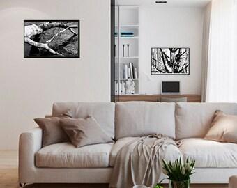 """Black & White Winter Tree 11""""x14"""" (framed print set of 2)"""