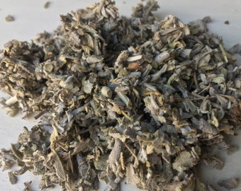 Sage, Salvia officinalis (Culinary Garden Sage)  ~ Sacred Herbs and Spices From Schmerbals Herbals