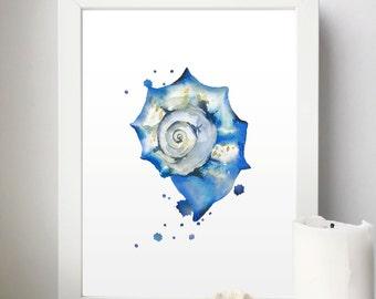Shell Printable, Watercolor Shell, Beach Wall Art, Seashell Wall Decor, Marine Print, Blue Print, Blue Art Tryphih, Ocean Set, Sea Set Art