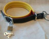 Paw Pull Trainer/Choker locking buckle