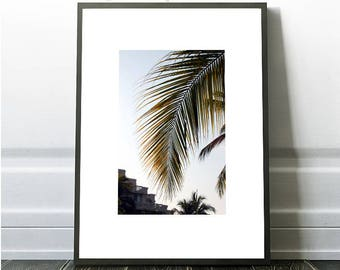 Mexican Print, Palm Leaf Prints, Intant Tropical Wall Art, Tropical Wall Art, Beach Wall Art, Tropical Photo, Tropical Photography, Palm