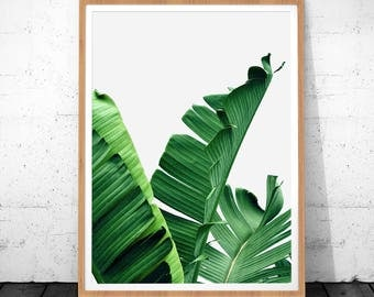 Tropical Plants, Tropical Poster, Tropical Digital Art, Palm Leaf, Palm Digital Print, Green Printable Art, Tropical Wall Art, Palm Poster