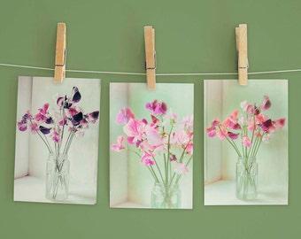 Sweet Pea Notecards (Six A6 Cards, Blank Inside) /Floral Notecards / Notecard Gift Set / Flower Notecards