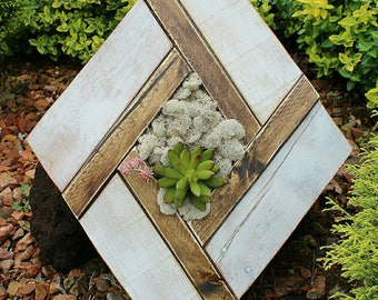 First Bloom // reclaimed pallet wood art // moss // garden // wood round // custom handmade // succulents // ready to ship
