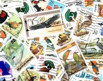 40 Bird Vintage Postage Stamps