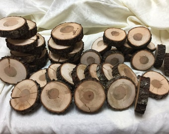 Tree Bark ~ 40  Hickory Tree Slices ~ Live Edge ~Wood Slices ~Natural Edge~DIY Crafts ~Diy Projects ~Natural Tree Slices