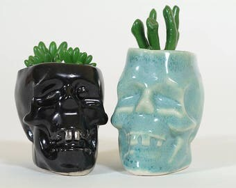 Skull planter, Succulent Plant Pot, Succulent Planter, Cute planter, Cute pot,Skull pot, Skull Succulent, Mothers day gift, Ceramic planter