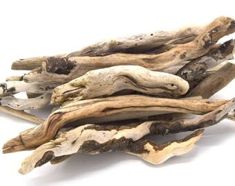 Lot of natural Driftwood batch of 250/500 grs