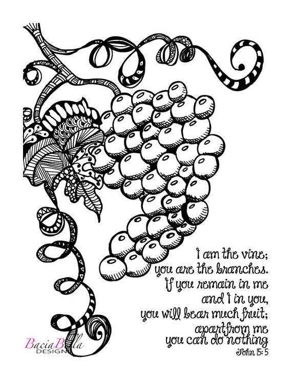 Vine and branches pages coloring pages for Vine and branches coloring page