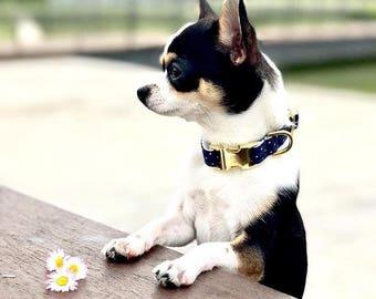 Model II dots dog collar