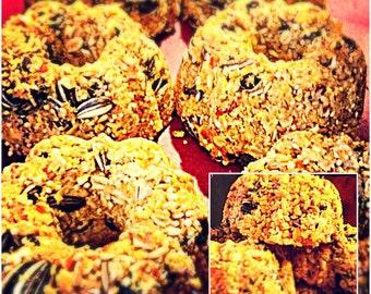 Free-Hanging Birdseed Patties/ Wild Birdseed Cakes/ Hanging Suet and Seed Cakes/ Birdie Bundt Cakes