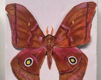 "Mini Moth Acrylic Painting 5x5"""