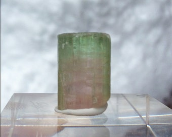 20.9 ct bi-color tourmaline from Kunar, Afghanistan (#48)