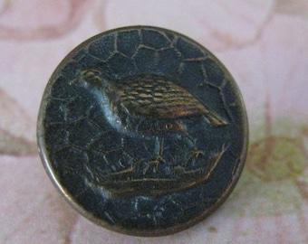 SALE Antique Metal Pheasant Picture Button