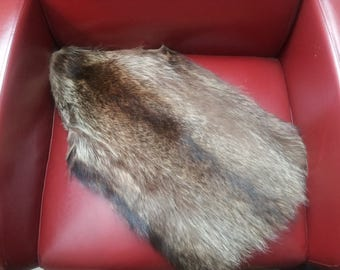 Raccoon fur piece, craft fur,fur trim,