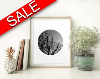 Wall Art Dusk Digital Print Trees Poster Art Dusk Wall Art Print Trees Photography Art Trees Photography Print Dusk Wall Decor Dusk Nature