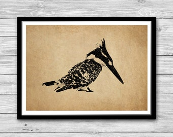 Ornithology print bird vintage style wall art, Bird Antique decoration office decor, cabin decor Bird illustration vintage art DIA27