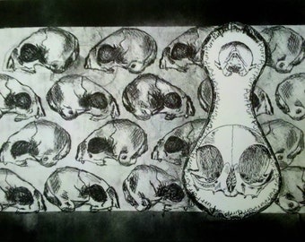Cat Skulls Lithograph