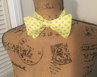 Lavender, and lime bow tie
