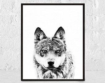 Wolf Print, Wolf Art, Wolf Animals Print, Wolf Printable, Wolf Art Print, Wolf Black and White, Wolf Wall Decor, Wolf Wall Art, Wolf Photo