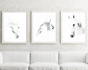 Horse Photography, Horse Print, Horse Photo, art print set, nursery print set, nursery decor, animal nursery art, baby room, kids room