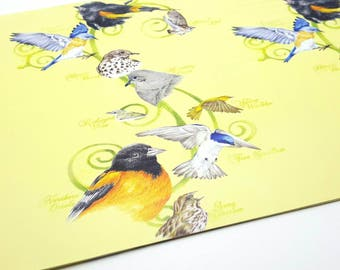 One sheet of Vintage Various Birds Wrapping Paper Birthday Gift Wrap Craft Supplies Scrapbook Supplies Canadian Wildlife Federation 1996