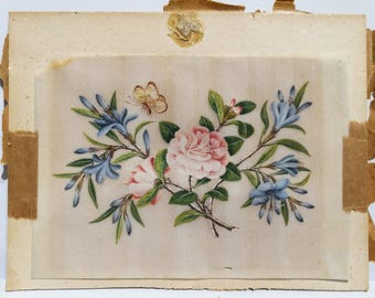 Beautiful Highly detailed Antique Original floral drawing- Coloured pencil/paint. circ 1890-1910 Blue/ pink flowers white butterfly