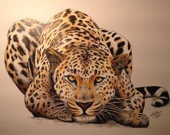 African Leopard Pen Sketch, Leopard Drawing, Big Cat Drawing, Africa, Black Leopard, The Big Five, Wildlife drawing, Wildlife sketch, Cat