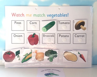 Learn vegetable words, matching game, KS1, Key stage 1, teaching resource, visual learner, reception, early learning, words to pictures