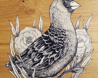 GAZE original painting on wood acrylic painting drawing, bird detail work, poppy, noa alon art, original art, home decoration, original gift