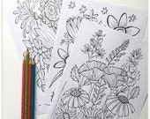 SALE - Quirky Botanicals 1: 3 page Colouring Booklet
