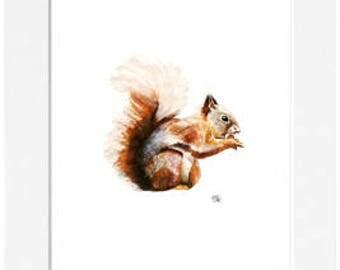 Squirrel Mounted Print (40 x 50cm)