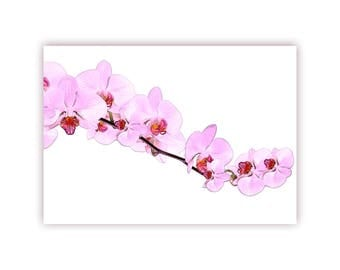 "Postcard ""Orchid"" Flower beauty"