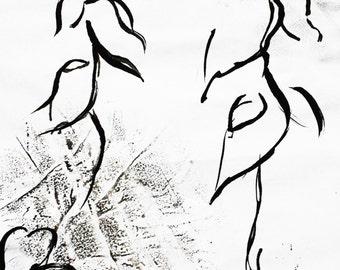 I print landscape I three plants I