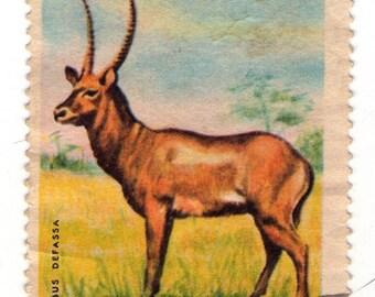 collectible royaume du burundi postage stamp 1964