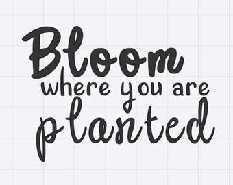 Bloom Where You Are Planted Vinyl Sticker Decal