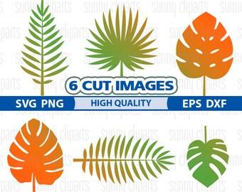 Palm Leaf Svg, Palm Leaf Decal, Leaf Svg, Tropical Svg, Tropical Clipart, Tropical Decals, Svg Originals, Commercial Use Svg, Most Sold Item