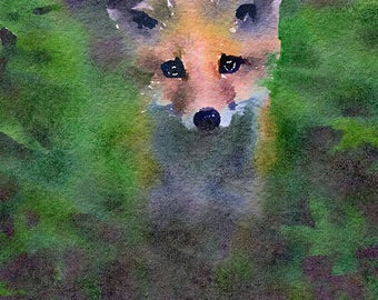 Fox Original Watercolour Painting Q12