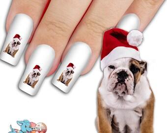 English Bulldog In Santa Hat Nail Art Kit - Dog Nail Decals - Waterslide Nail Decals - English Bulldog Nail Decals