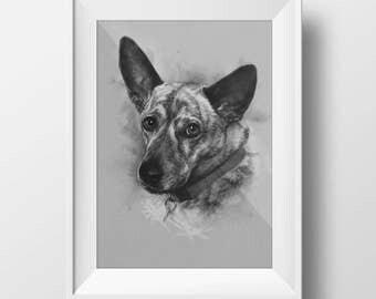 Pet Sketched Portrait - 16x20 Fine Art Print