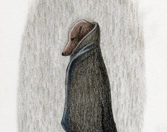 Illustration Dachshund Dachshund print